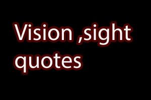 vison sight quotes