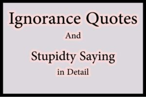 ignorance quotes about stupidity